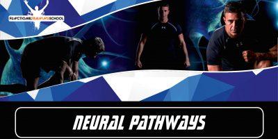 Catania, 13-14 Giugno 2020 – NEURAL PATHWAYS