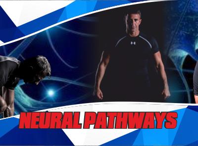 Cesena, 20-21 luglio – NEURAL PATHWAYS – 1° Livello