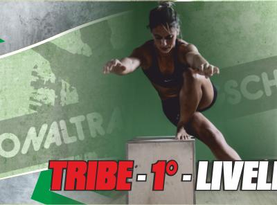 Bari, 28-29 settembre – TRIBE – 1° Livello
