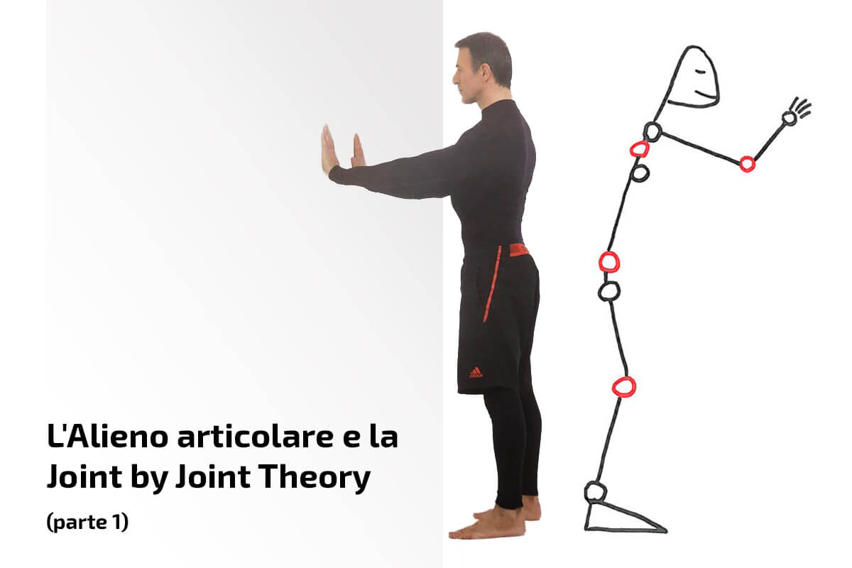 L'Alieno articolare e la joint by joint theory (parte 1)