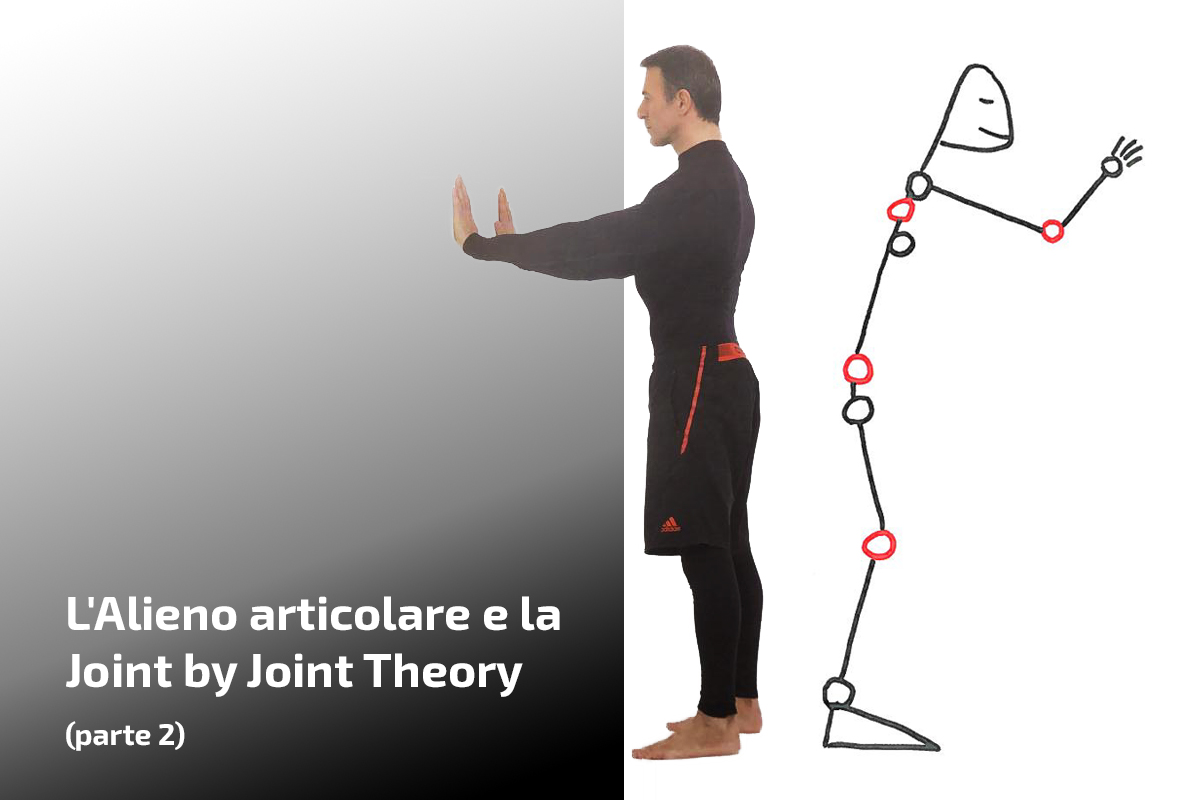L'Alieno articolare e la joint by joint theory (parte 2)